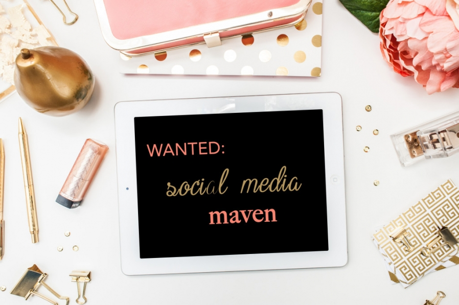 now hiring  social media specialist  u00bb modern raleigh north